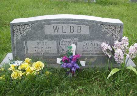 WEBB, SOPHIE - Benton County, Arkansas | SOPHIE WEBB - Arkansas Gravestone Photos