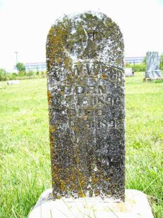 WEBB, W. W. - Benton County, Arkansas   W. W. WEBB - Arkansas Gravestone Photos