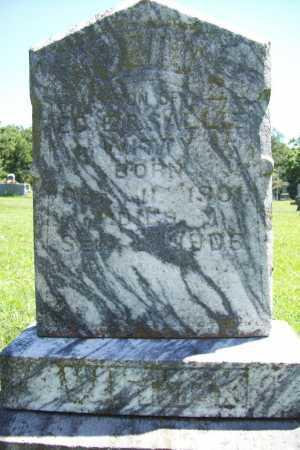 WITTY, BERT - Benton County, Arkansas | BERT WITTY - Arkansas Gravestone Photos