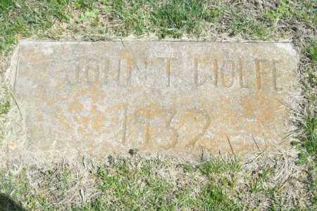 WOLFE, JOHN T. - Benton County, Arkansas | JOHN T. WOLFE - Arkansas Gravestone Photos