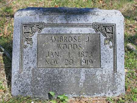 WOODS, AMBROSE J - Benton County, Arkansas | AMBROSE J WOODS - Arkansas Gravestone Photos