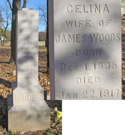WOODS, CELINA - Benton County, Arkansas | CELINA WOODS - Arkansas Gravestone Photos