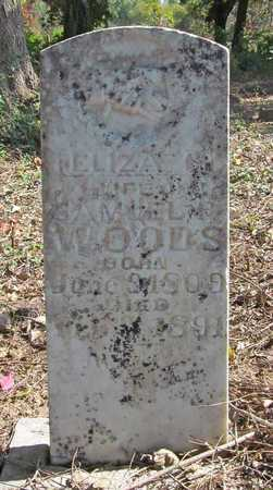 WOODS, ELIZABETH GREAVES - Benton County, Arkansas | ELIZABETH GREAVES WOODS - Arkansas Gravestone Photos
