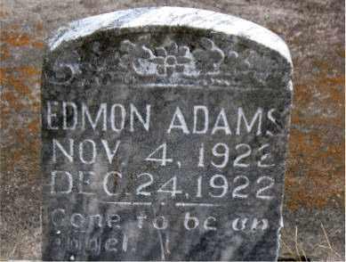 ADAMS, EDMON - Boone County, Arkansas | EDMON ADAMS - Arkansas Gravestone Photos
