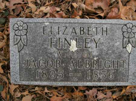 ALBRIGHT, ELIZABETH - Boone County, Arkansas | ELIZABETH ALBRIGHT - Arkansas Gravestone Photos