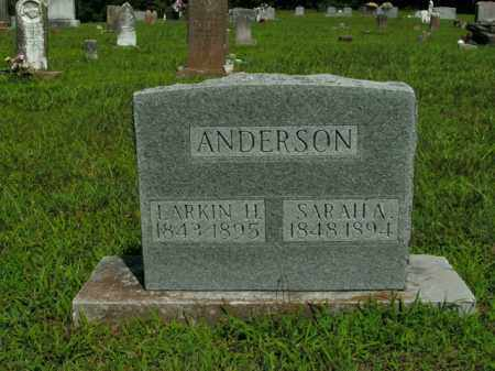 ANDERSON, LARKIN H. - Boone County, Arkansas | LARKIN H. ANDERSON - Arkansas Gravestone Photos