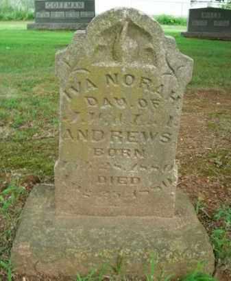 ANDREWS, IVA NORAH - Boone County, Arkansas | IVA NORAH ANDREWS - Arkansas Gravestone Photos
