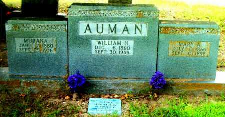 BILES AUMAN, MURANA - Boone County, Arkansas | MURANA BILES AUMAN - Arkansas Gravestone Photos