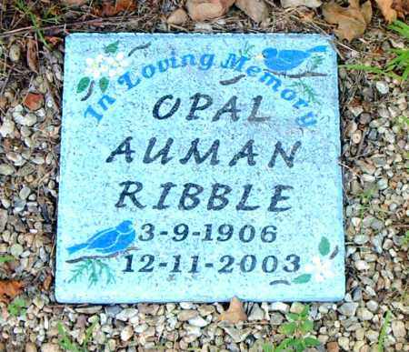 AUMAN RIBBLE, OPAL - Boone County, Arkansas | OPAL AUMAN RIBBLE - Arkansas Gravestone Photos