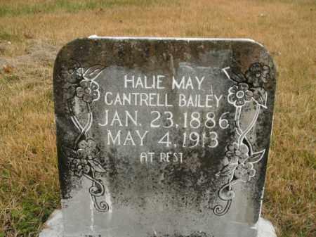 BAILEY, HALIE MAY - Boone County, Arkansas   HALIE MAY BAILEY - Arkansas Gravestone Photos