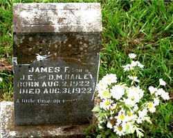BAILEY, JAMES F - Boone County, Arkansas | JAMES F BAILEY - Arkansas Gravestone Photos