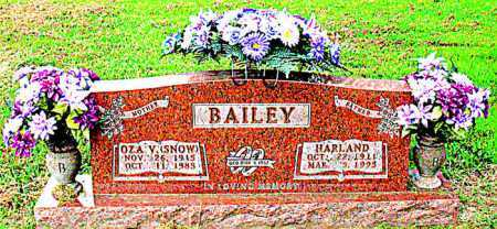 SNOW BAILEY, OZA V - Boone County, Arkansas | OZA V SNOW BAILEY - Arkansas Gravestone Photos