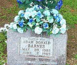 BARNES, ADAM DONALD - Boone County, Arkansas | ADAM DONALD BARNES - Arkansas Gravestone Photos