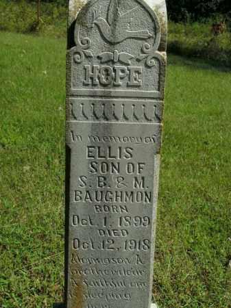BAUGHMAN, ELLIS - Boone County, Arkansas   ELLIS BAUGHMAN - Arkansas Gravestone Photos