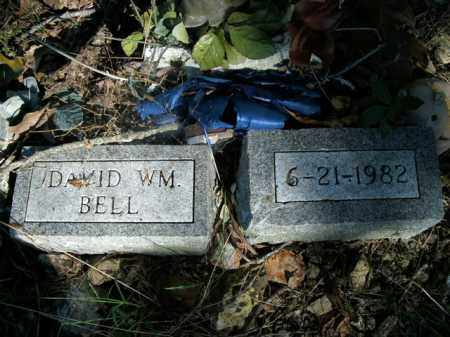 BELL, DAVID WILLIAM - Boone County, Arkansas | DAVID WILLIAM BELL - Arkansas Gravestone Photos
