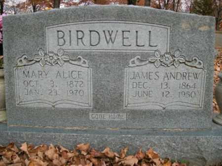 BIRDWELL, JAMES ANDREW - Boone County, Arkansas   JAMES ANDREW BIRDWELL - Arkansas Gravestone Photos