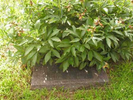 BLAND, CAMERON LEROY - Boone County, Arkansas   CAMERON LEROY BLAND - Arkansas Gravestone Photos