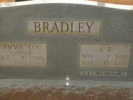 BRADLEY, A.B. - Boone County, Arkansas | A.B. BRADLEY - Arkansas Gravestone Photos