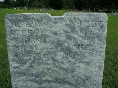BREECE, LUANY - Boone County, Arkansas | LUANY BREECE - Arkansas Gravestone Photos