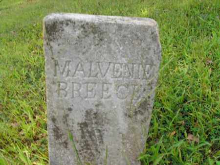BREECE, MALVENIE - Boone County, Arkansas | MALVENIE BREECE - Arkansas Gravestone Photos