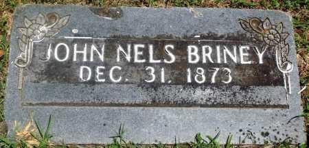 BRINEY, JOHN NELSON - Boone County, Arkansas | JOHN NELSON BRINEY - Arkansas Gravestone Photos