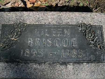 BRISCOE, EILEEN - Boone County, Arkansas | EILEEN BRISCOE - Arkansas Gravestone Photos