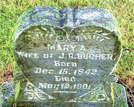 BUCHER, MARY A. - Boone County, Arkansas   MARY A. BUCHER - Arkansas Gravestone Photos