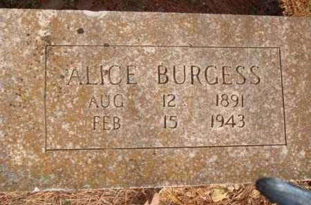 BURGESS, ALICE - Boone County, Arkansas | ALICE BURGESS - Arkansas Gravestone Photos