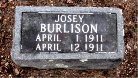 BURLISON, JOSEY - Boone County, Arkansas | JOSEY BURLISON - Arkansas Gravestone Photos