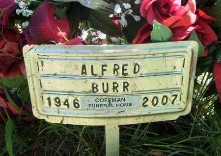 BURR, ALFRED - Boone County, Arkansas | ALFRED BURR - Arkansas Gravestone Photos