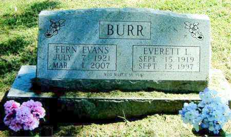 BURR, FERN - Boone County, Arkansas | FERN BURR - Arkansas Gravestone Photos