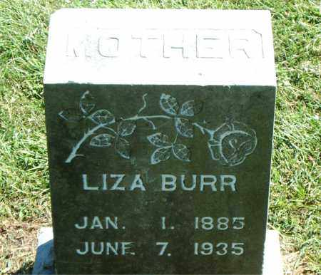 BURR, ELIZA JANE - Boone County, Arkansas   ELIZA JANE BURR - Arkansas Gravestone Photos