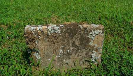 C, T.M. - Boone County, Arkansas | T.M. C - Arkansas Gravestone Photos