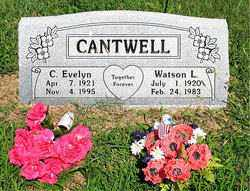 CANTWELL, WATSON L - Boone County, Arkansas | WATSON L CANTWELL - Arkansas Gravestone Photos