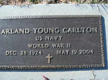 CARLTON  (VETERAN WWII), ARLAND YOUNG - Boone County, Arkansas | ARLAND YOUNG CARLTON  (VETERAN WWII) - Arkansas Gravestone Photos