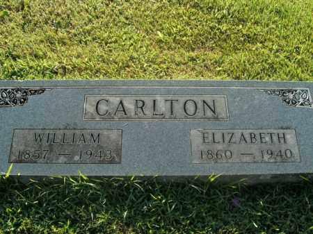 CARLTON, ELIZABETH - Boone County, Arkansas | ELIZABETH CARLTON - Arkansas Gravestone Photos