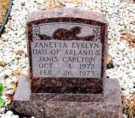 CARLTON, ZANETTA  EVELYN - Boone County, Arkansas | ZANETTA  EVELYN CARLTON - Arkansas Gravestone Photos