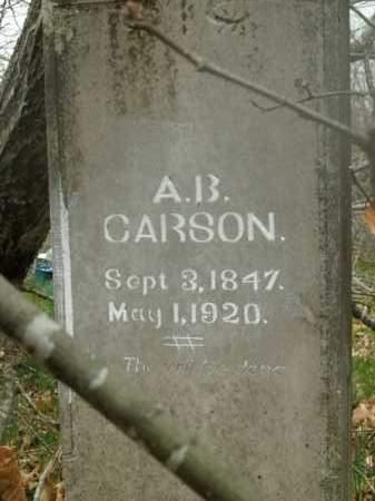 CARSON, ALBERT B. - Boone County, Arkansas   ALBERT B. CARSON - Arkansas Gravestone Photos