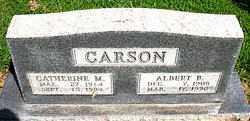 CARSON, CATHERINE M - Boone County, Arkansas | CATHERINE M CARSON - Arkansas Gravestone Photos