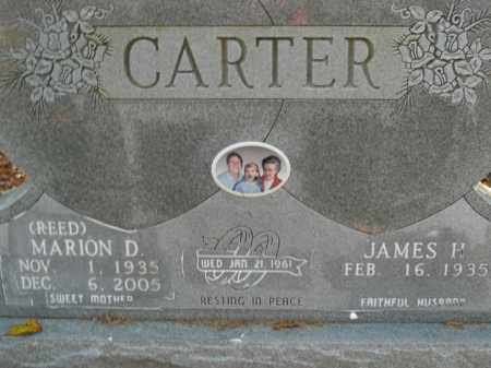 CARTER, MARION D. - Boone County, Arkansas | MARION D. CARTER - Arkansas Gravestone Photos