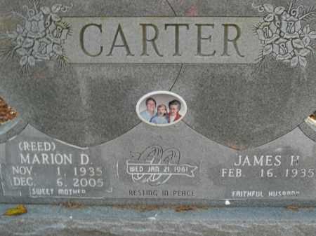 REED CARTER, MARION D. - Boone County, Arkansas | MARION D. REED CARTER - Arkansas Gravestone Photos