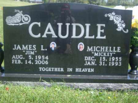 """CAUDLE, MICHELLE """"MICKEY"""" - Boone County, Arkansas 