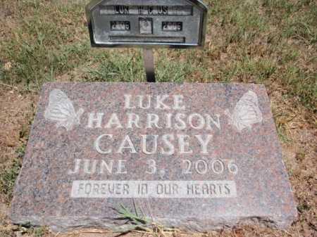 CAUSEY, LUKE HARRISON - Boone County, Arkansas   LUKE HARRISON CAUSEY - Arkansas Gravestone Photos