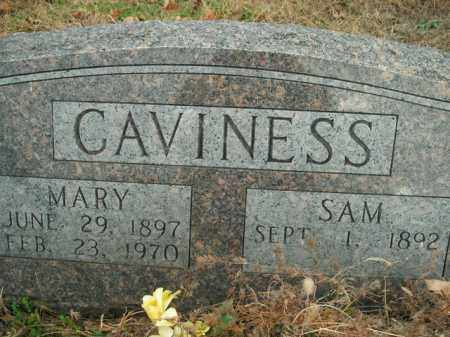CAVINESS, MARY - Boone County, Arkansas | MARY CAVINESS - Arkansas Gravestone Photos