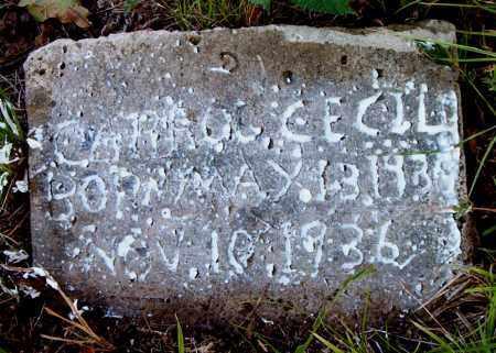 CECIL, CARROL - Boone County, Arkansas   CARROL CECIL - Arkansas Gravestone Photos