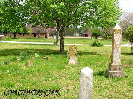 *LAMB CEMETERY OVERVIEW,  - Boone County, Arkansas |  *LAMB CEMETERY OVERVIEW - Arkansas Gravestone Photos