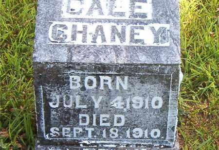 CHANEY, DALE - Boone County, Arkansas | DALE CHANEY - Arkansas Gravestone Photos