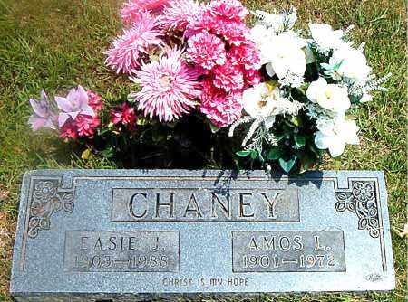 CHANEY, EASIE  J. - Boone County, Arkansas | EASIE  J. CHANEY - Arkansas Gravestone Photos