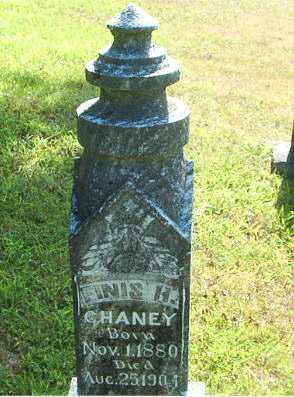 CHANEY, FINIS H. - Boone County, Arkansas   FINIS H. CHANEY - Arkansas Gravestone Photos
