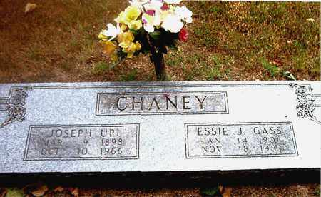 CHANEY, ESSIE  JOSEPHINE - Boone County, Arkansas   ESSIE  JOSEPHINE CHANEY - Arkansas Gravestone Photos